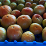 Image of a crate of tomatoes