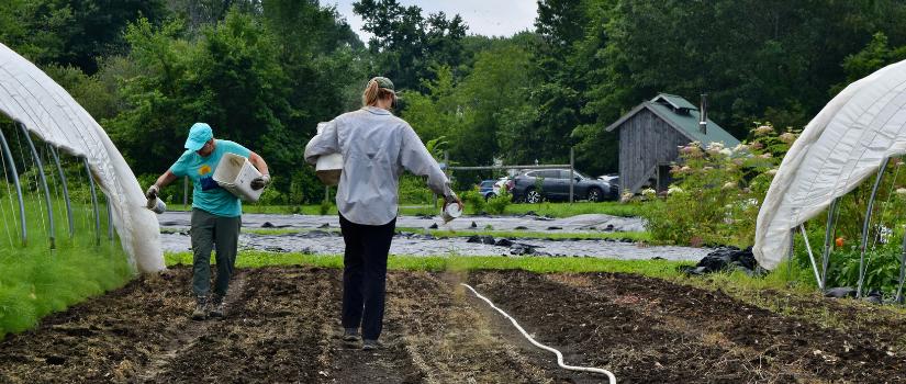 Barb and Farmer Avery put down fertilizer.